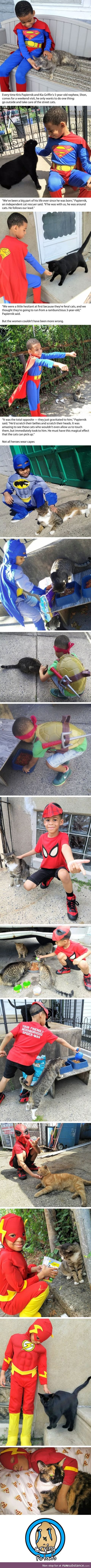 5-year-old boy who saves street cats is the hero we all want