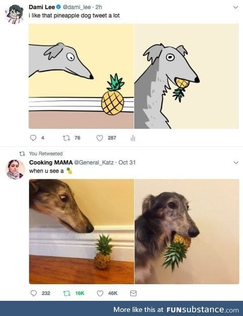 Pineapple dog tweet