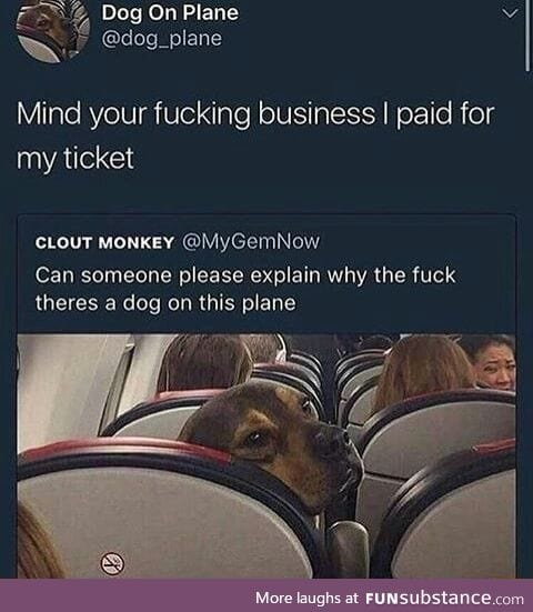 The dog did nothing wrong