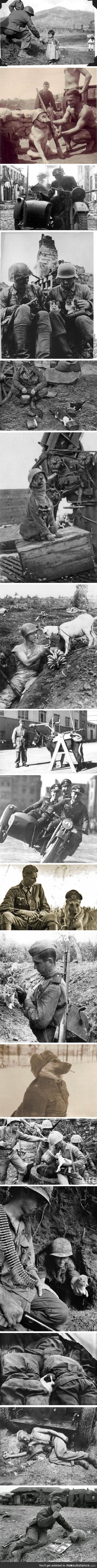 Cool war photos