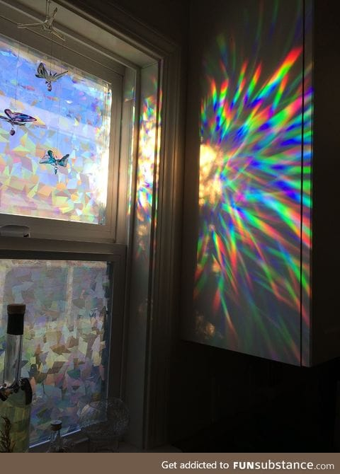 Holographic window film