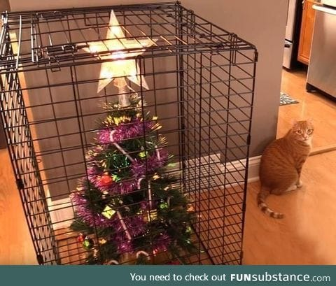 Cat-proofing Christmas