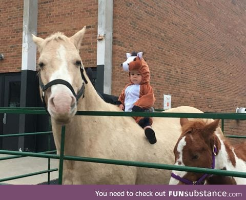 He's dressed as a horse riding a horse
