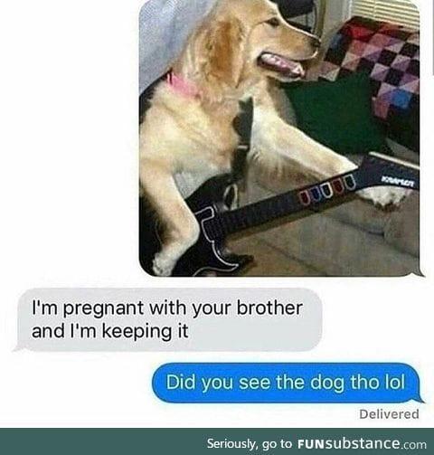 Legend says dog became guitar god
