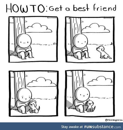 Go steal a dog