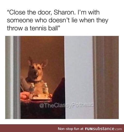 Damn it Sharon