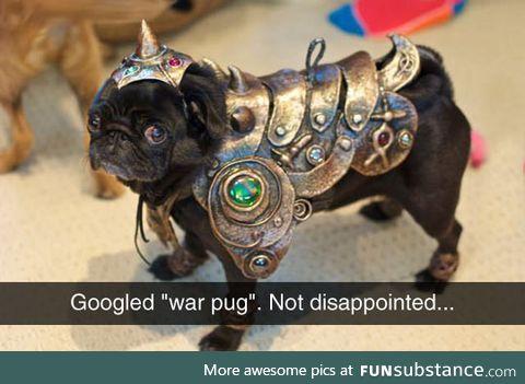 The war pug