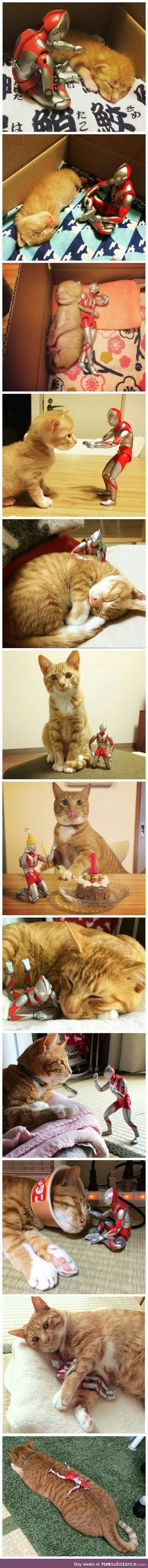 Ultra man and his cat