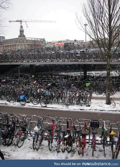 The average parking lot in The Netherlands