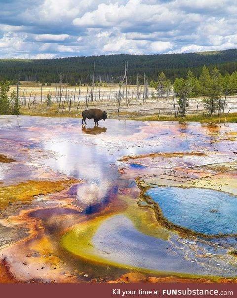 Yellowstone looks prehistoric AF
