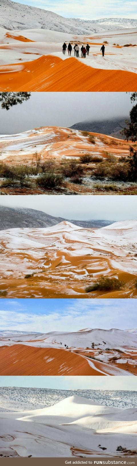 Snow in Sahara. Yup. We definitely need some of that global warming.