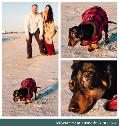 When you take engagement photos in 20 degree weather