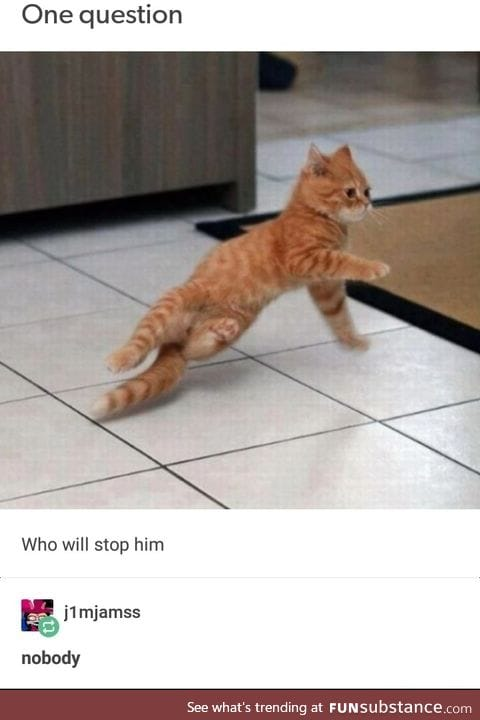 Let him do what he wants