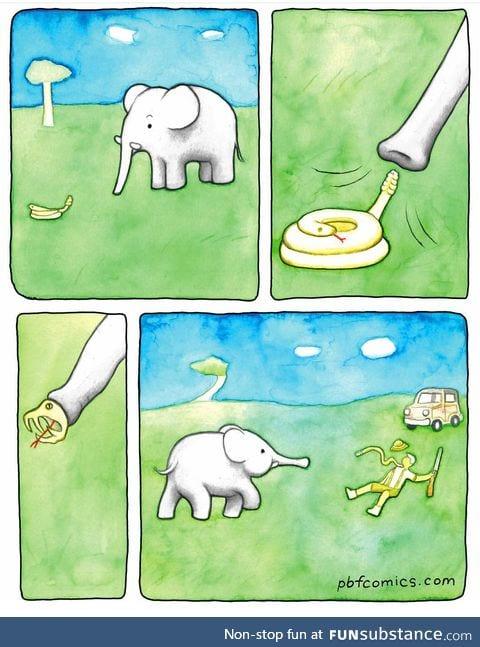 How to escape Poachers 101.