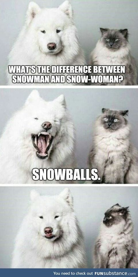 Let's call them snow-people in order to avoid sexual debattes