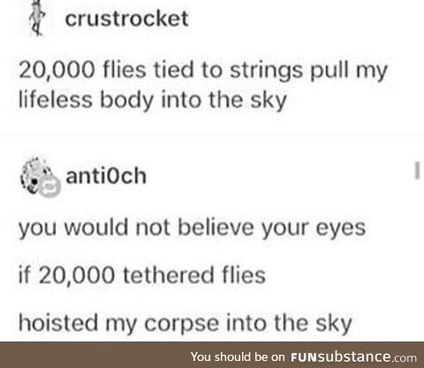 20,000 flies tied to your body