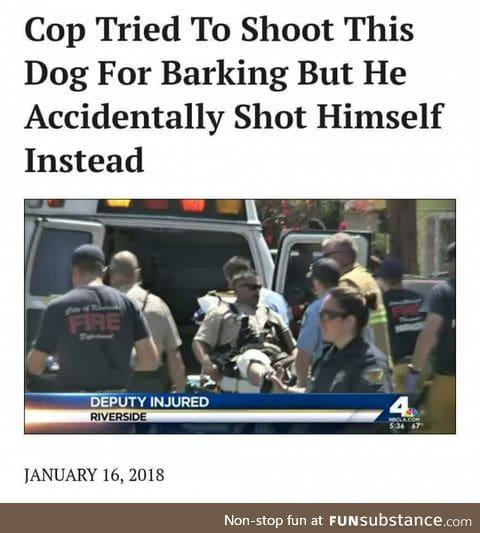 Dog is just God Spelled backwards