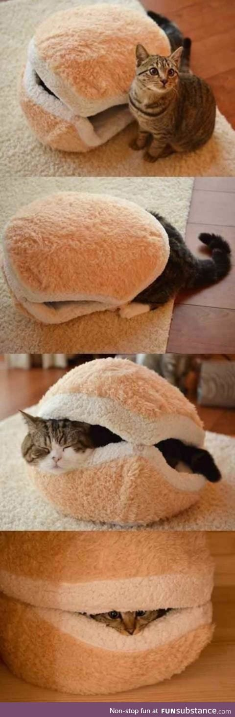 The cat comforter