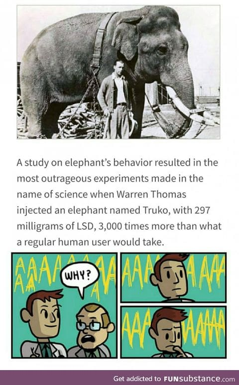 Why? Thats irrelephant