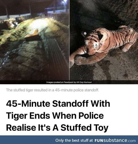 Tiger goes soft on the cops