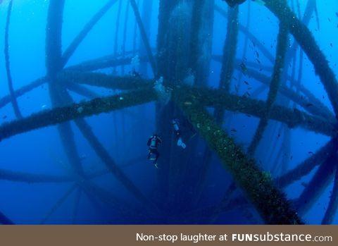 Scuba diving near oil rig legs