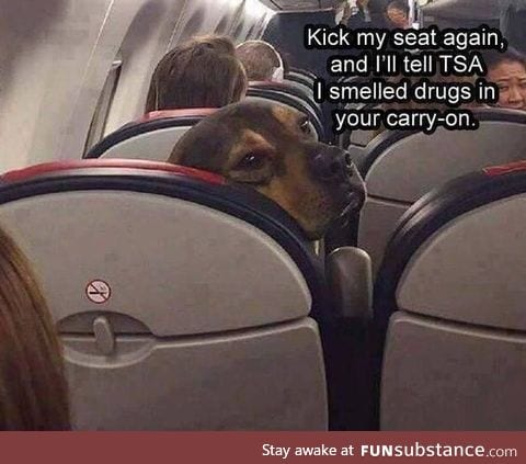 Kick my seat again