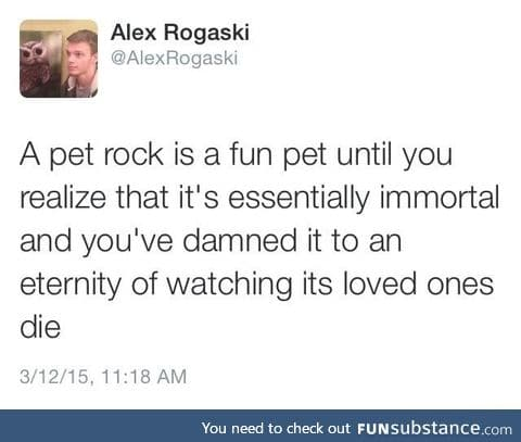 The sad thing about pet rock