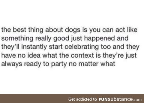 Best thing about a dog