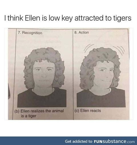 How to react to tigers