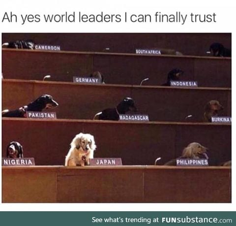Who is a good leader? You are! Yes, you are!
