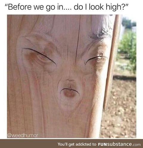 Do I look high?