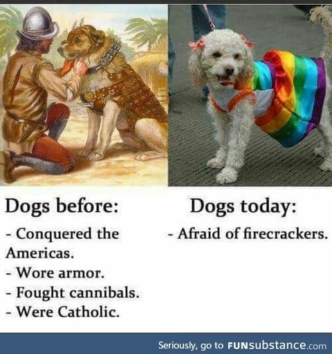 Dogs - a history