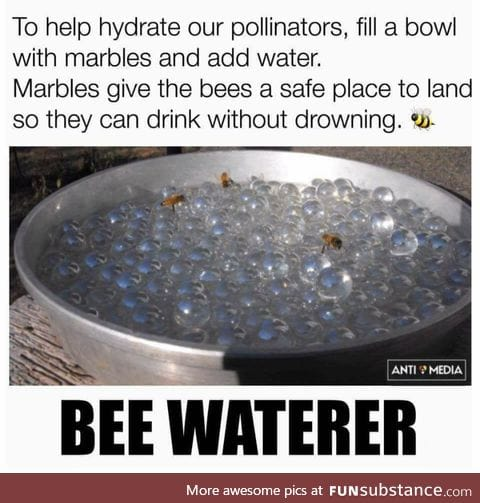 They would bee appreciative
