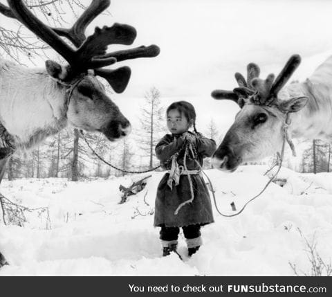 Nomad child in Mongolia with her reindeer
