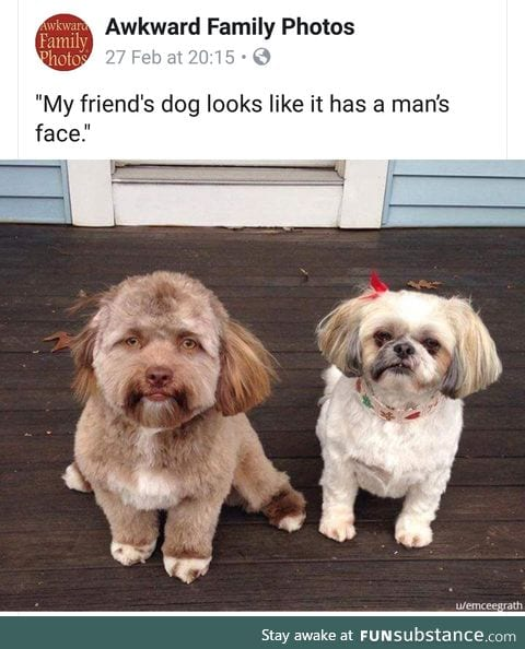 I thought this was some sort of face swap!