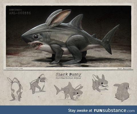 Behold the shark-bunny