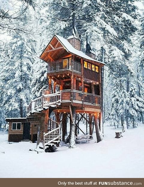 Tiny tree-house cabin in the forest