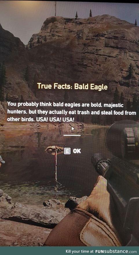 Far Cry telling it as it is