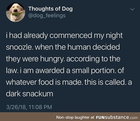 Thoughts of Dog: Dark Snackum