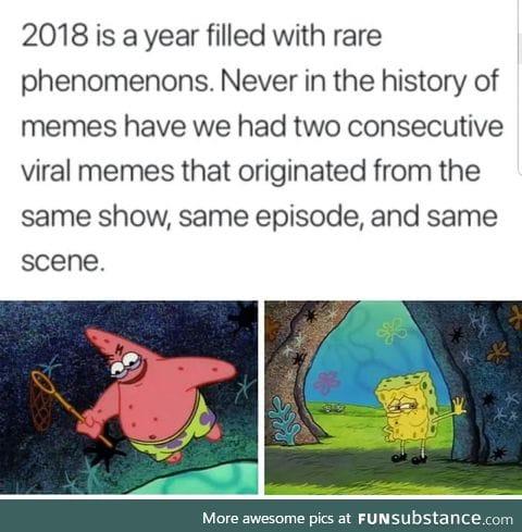 Rare phenomenons in the world of memes