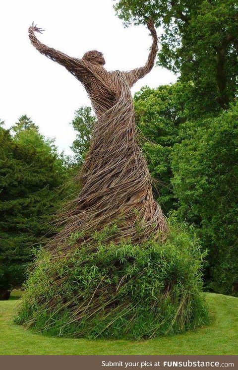 A living Willow Statue in a walled garden in Scotland