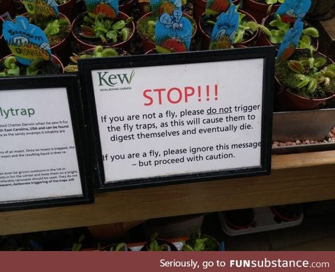 This sign in front of a bunch of Venus Flytrap