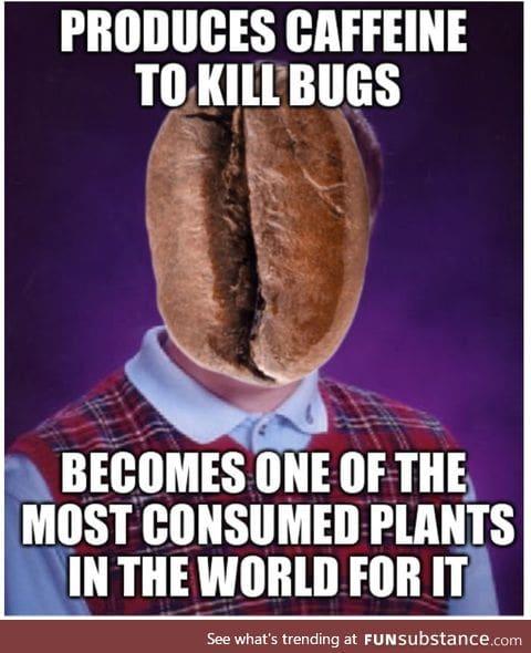 That's some bad evolution
