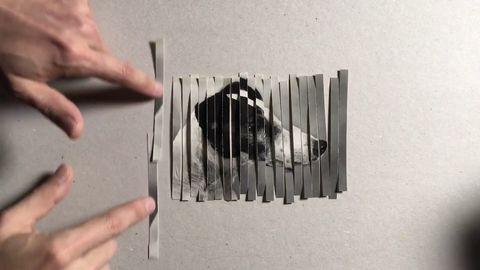 Cool effect when shredding photos