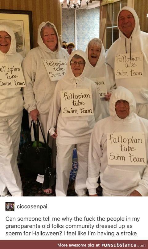 ~fallopian tube swim team ~