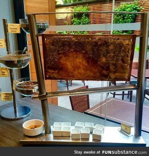 This hotel has fresh honey in their breakfast buffet
