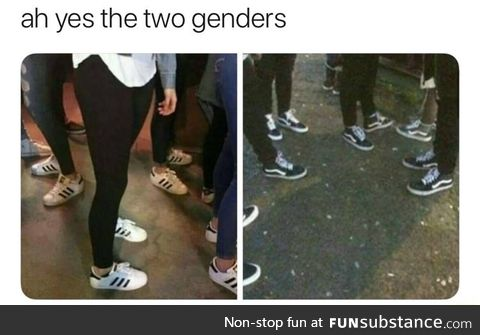 There are only 2 genders