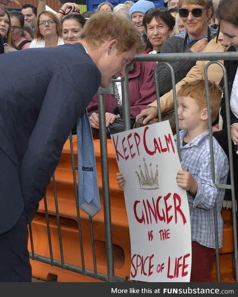 Prince Harry meets a fellow ginger