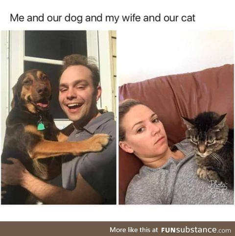 Pets do understand