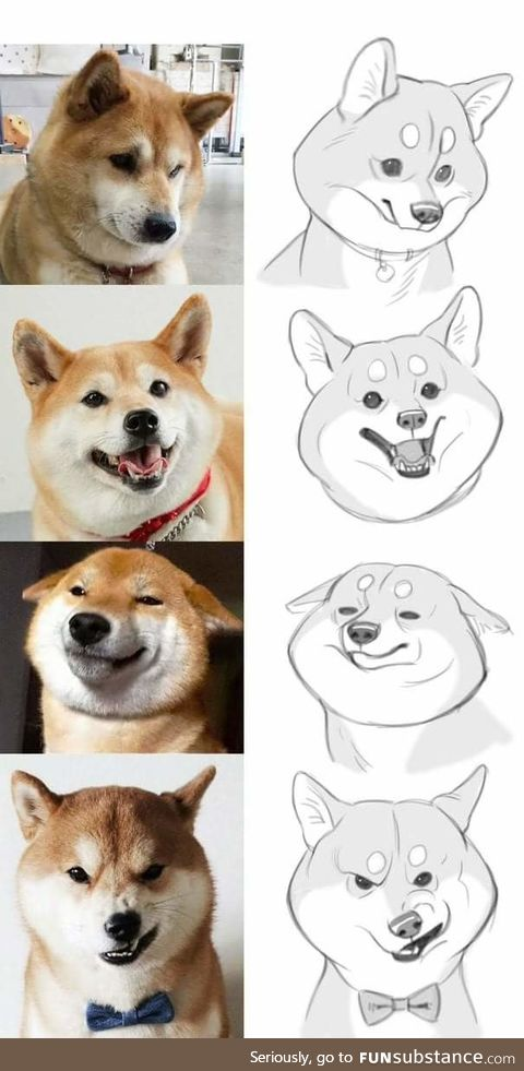 Doggo art